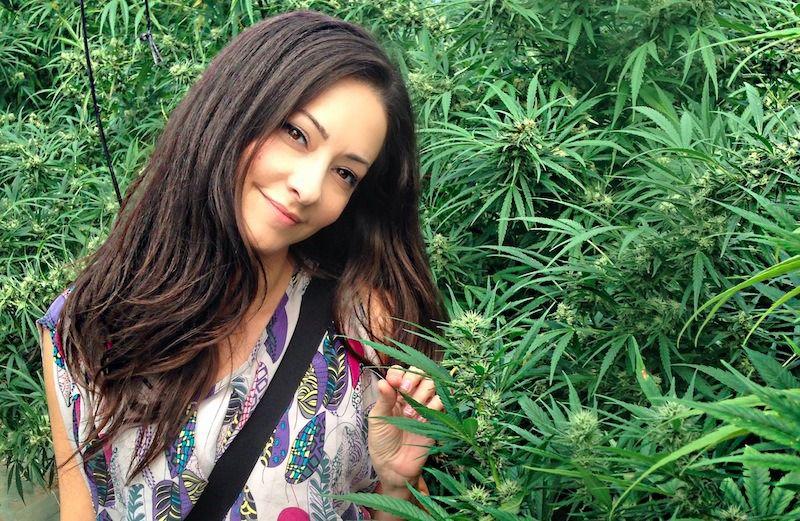 Dr Dina Cannabis Doctor